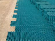 Hexapath environmentally friendly paving grids